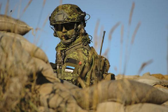 Русскоязычных солдат НАТО обвинили в травле эстонцев. 399523.jpeg