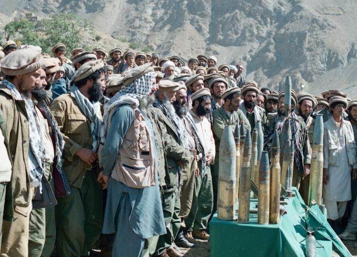 афганцы