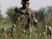 В Лондоне собираются обсудить афганскую ситуацию