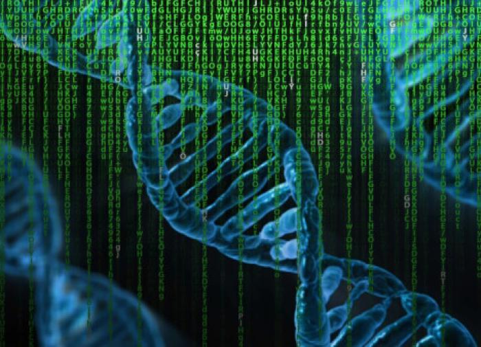 Эксперимент с геном