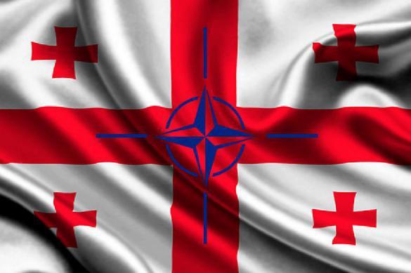 В США нашли уловку для приема Грузии в НАТО. 387526.jpeg