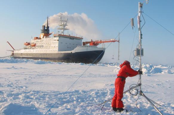 Изменение климата в Арктике повлияло на миграцию животных. 402527.jpeg