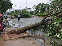 За три дня тайфун