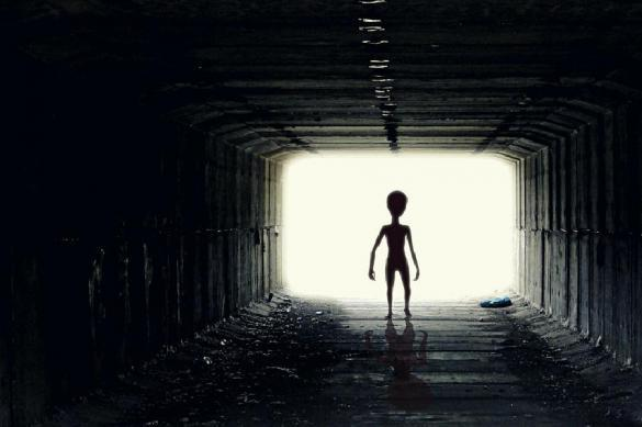 Ученые объяснили, почему инопланетяне могут быть похожими на людей. 378531.jpeg