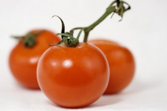 Помидоры на подоконнике - способы выращивания в квартире. 396533.jpeg