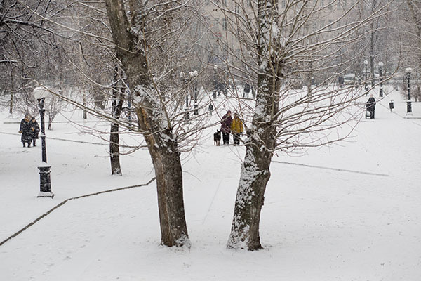Зима в Москве берет реванш. Зима пришла в Москву