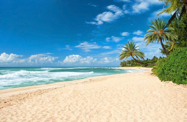 12 правил пляжного отдыха с детьми. 12 правил пляжного отдыха с детьми