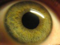 Калифорнийский ученый придумал, как поменять цвет глаз без линз. 248536.jpeg