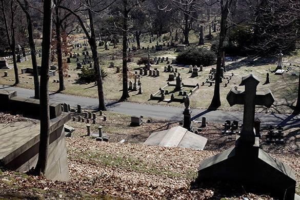 Житель Брянска пропил украденную  с кладбища ограду. 317538.jpeg