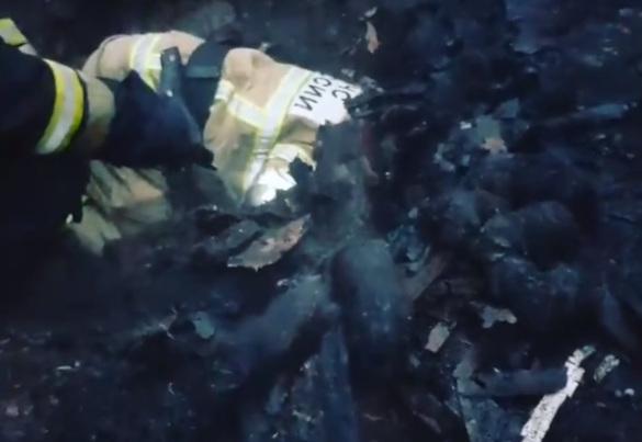 Пожарные в Нижнем Новгороде спасли щенков из горящего дома. 393538.jpeg