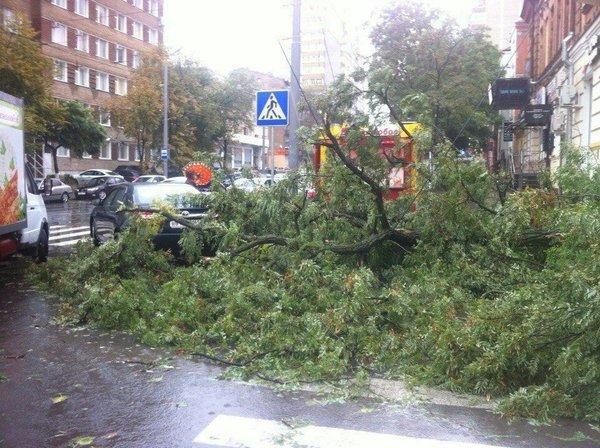 Москву предупредили о скором шторме.