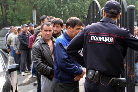 СМИ: даже среди легальных мигрантов отмечается рост преступлений. 380546.jpeg