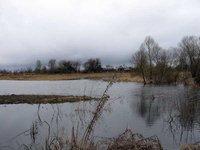 Болгария выставляет на продажу гектар земли. 235550.jpeg