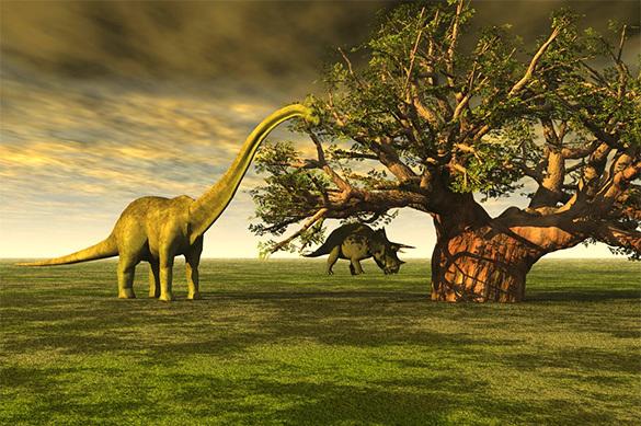 Ученые открыли новый вид гигантского динозавра— Юрский парк