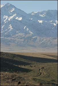 Следы Ноева Ковчега обнаружены в Казахстане (фоторепортаж)
