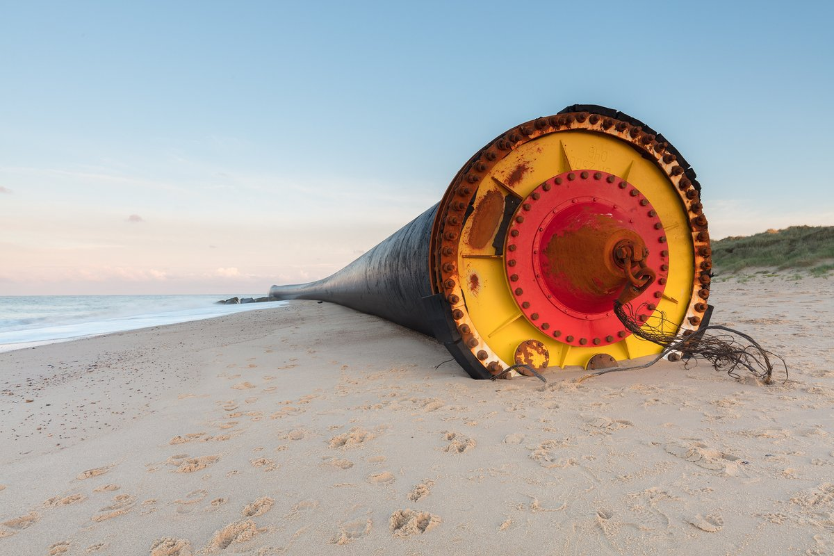 Гигантские трубы, выброшенные приливом на берег моря, шокировали англичан. Гигантские трубы, выброшенные приливом на берег моря, шокировали