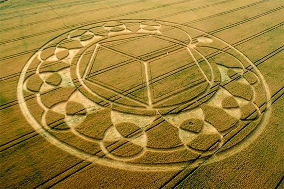 Инопланетяне повадились в Подмосковье, опять круги на поле оставили. загадочные круги на поле