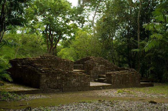 В джунглях Гватемалы найдены десятки городов исчезнувшей цивилизации. 382567.jpeg