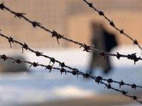 Тела двоих заключенных найдены в свинарнике. 250568.jpeg
