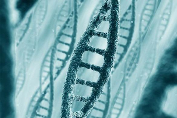 Российские биологи нашли причину рассеянного склероза
