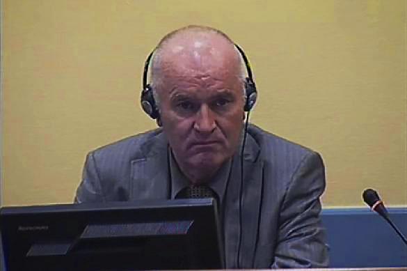 Европейцы свалили на Младича ответственность за геноцид. 379573.jpeg