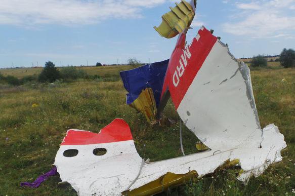 В Голландии хотят привлечь Украину к делу о крушении MH17. 387582.jpeg