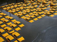 Резкие холода застали врасплох жителей Нью-Йорка. 273583.jpeg