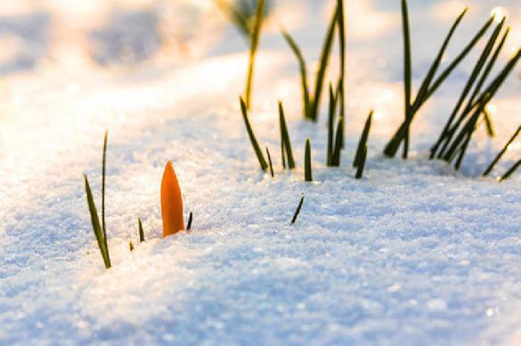 Лето по-русски: Поволжье завалило снегом. 387584.jpeg