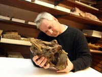 Найдены три новых вида динозавров