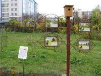 Росбанк помог томичам услышать пение птиц