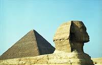 Египет встает на защиту российских туристов