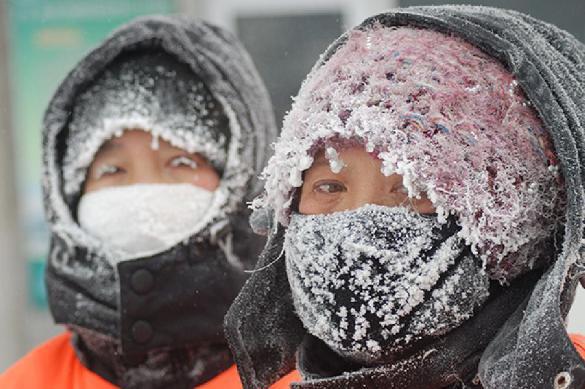Названы способы пережить морозы без последствий. 383594.jpeg