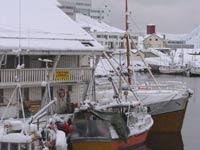 В Норвегии задержан российский сухогруз