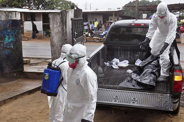 Жертвами  лихорадки Эбола уже стало  3 тысячи человек. 299597.jpeg
