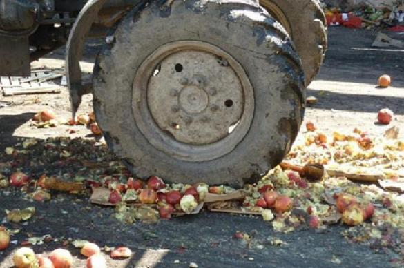 В Чите уничтожили польские яблоки. 387601.jpeg