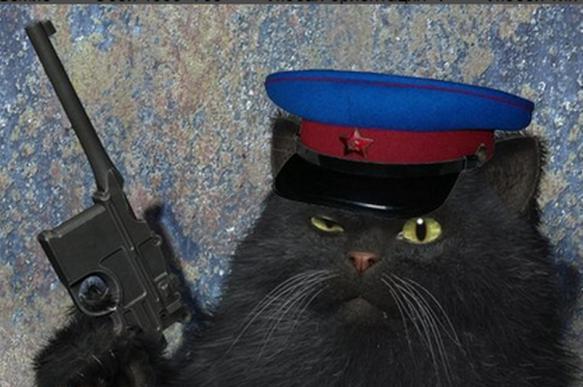Опубликованы подробности тайных похорон кота Скрипалей. 391601.jpeg
