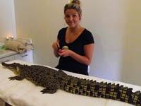 Самке крокодила сделали эпиляцию и маникюр. 249602.jpeg