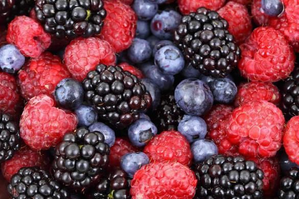 Ученые нашли ягоду, которая
