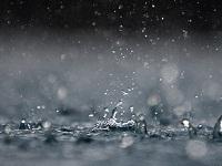 дождь. 268606.jpeg