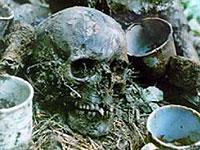 В Курской области обнаружены останки почти 120 советских солдат