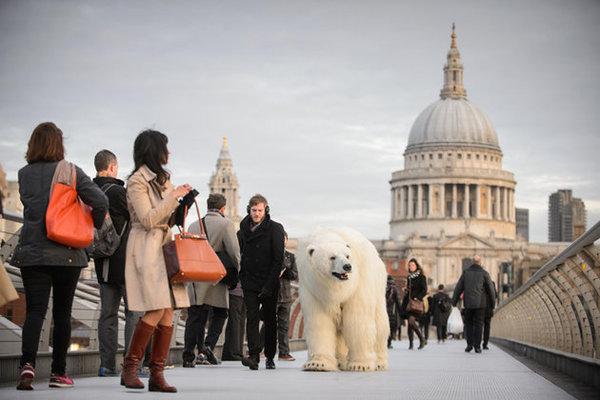 По Лондону гуляет арктический мишка.ФОТО. 310611.jpeg