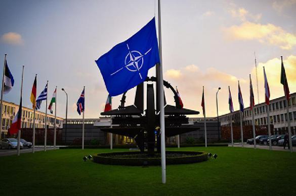 НАТО приготовило коммюнике на случай побега Трампа. 390613.jpeg