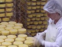 Киев договорился с Москвой насчет сыра. 258663.jpeg