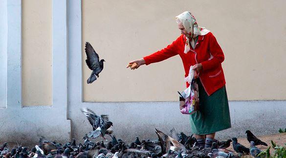 Пенсионерка из Саратова запрещала курить московским гномикам. 316615.jpeg