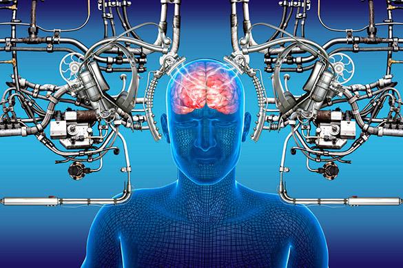 Ученые рассказали, что может продлить жизнь мозга. Ученые рассказали, что может продлить жизнь мозга