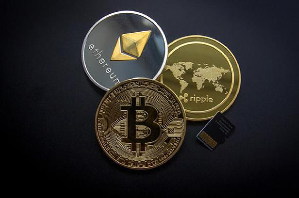 Что произошло с курсом криптовалют за сутки?. 392617.jpeg