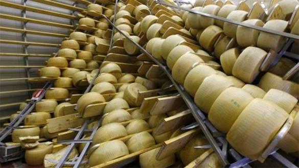 Молочная отрасль выиграет больше, если запретить ввоз сыроподобного продукта из ЕС - эксперт. сыр