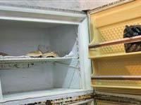 Похитительница детей хранила труп в морозилке. 250620.jpeg