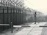 Немцы не против возвращения Берлинской стены