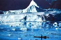Ученые предсказали, когда растает арктический лед
